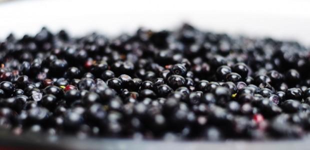 Afinele au numeroase proprietati si aduc numeroase beneficii sanatatii. Pe langa faptul ca sunt niste fructe cu adevarat delicioase,afinele sunt unele dintre cele mai sanatoase fructe, avand un aport foarte […]