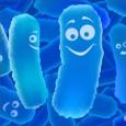 """Probioticele sunt medicamente """"la moda"""", mai ales ca in ultima vreme se vorbeste foarte des despre ele, fiind de fapt diferite mixturi de germeni microbieni benefici pentru organismul uman, mai […]"""